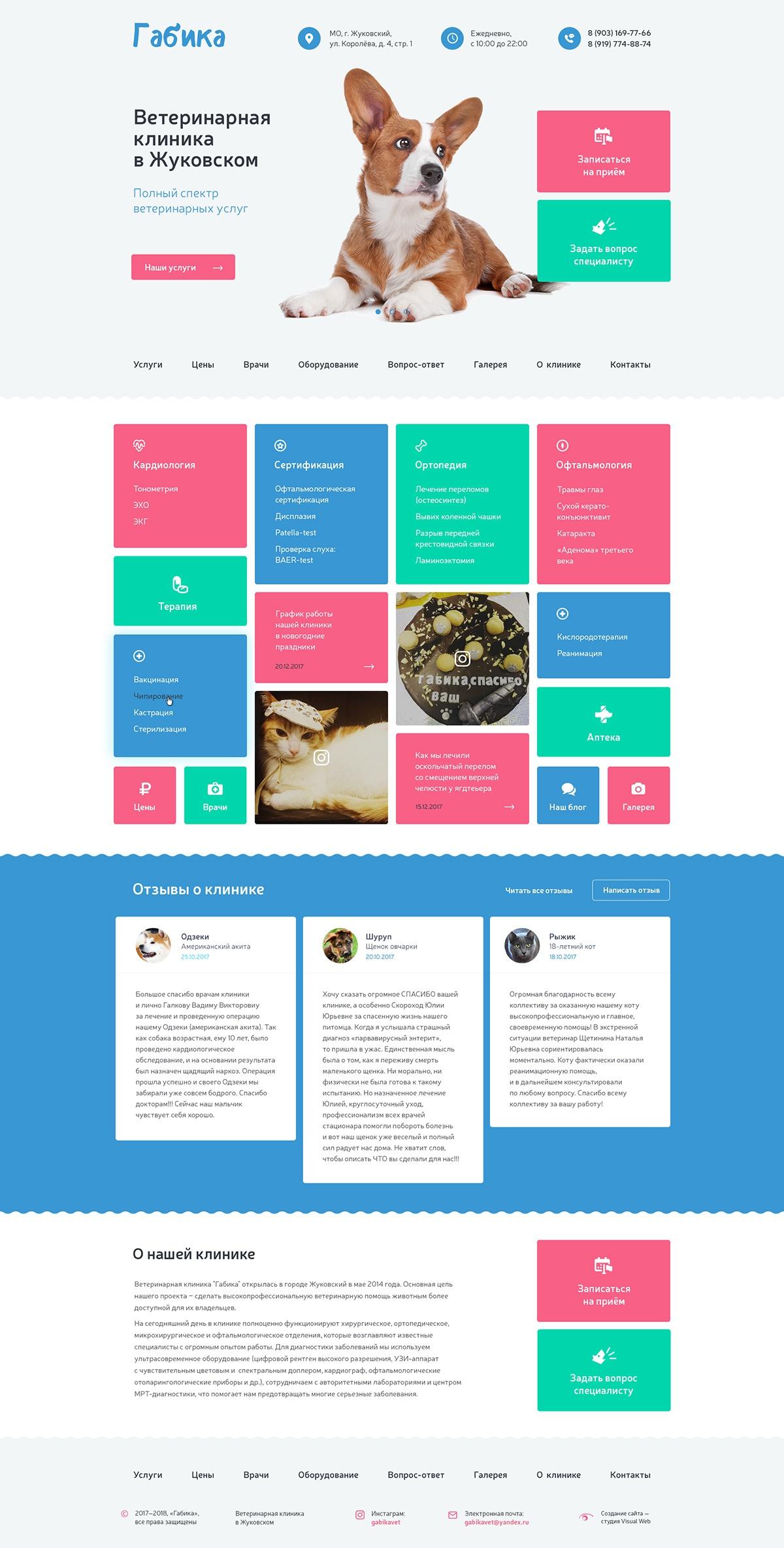 Создание сайта ветеринарной клиники «Габика»